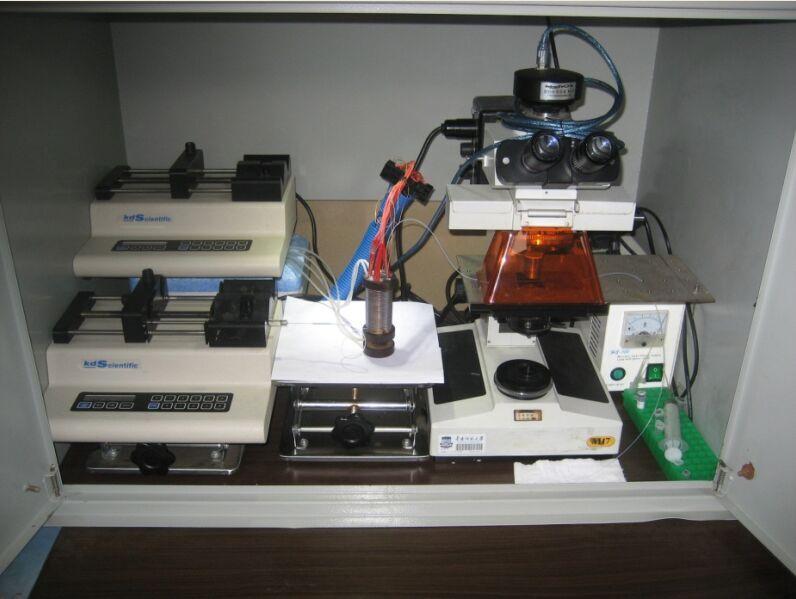 微流控PCR检测平台.jpg