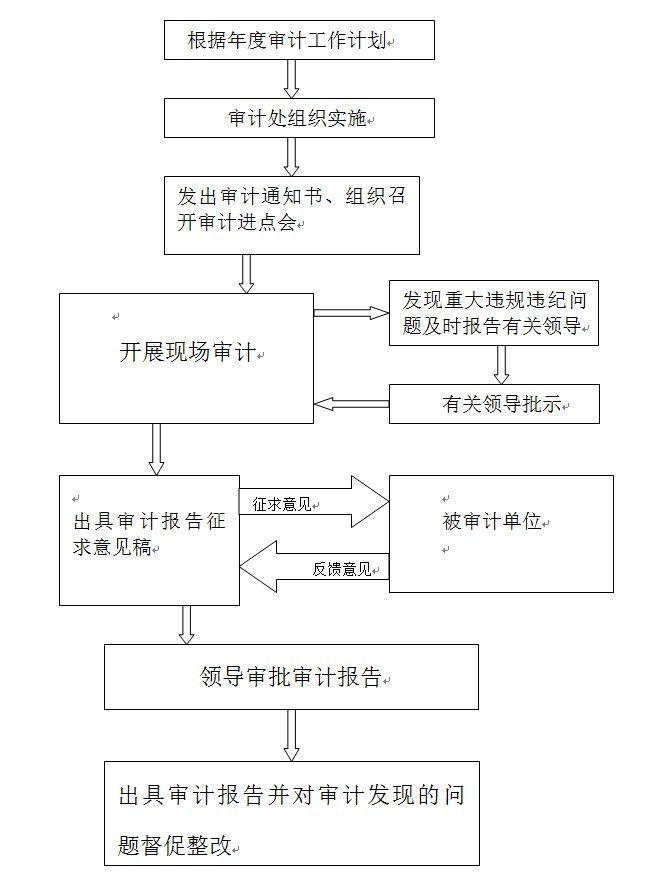 财务审计科审计流程