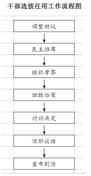 干部选拨任用工作流程图
