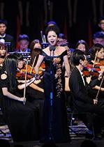 纪念抗战胜利70周年音乐会(十五)