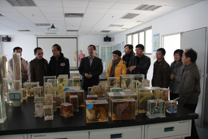 学校领导及专家来我实验中心进行本科教学实验室安全检查工作